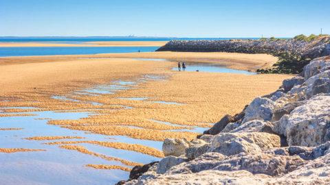 annuaire des marées Royan La tremblade La Palmyre Vaux sur Mer